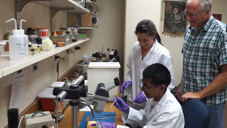 Student using a microscope with lab mentor