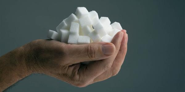 Right hand holding a rounded handful of sugar cubes in front of a gray background